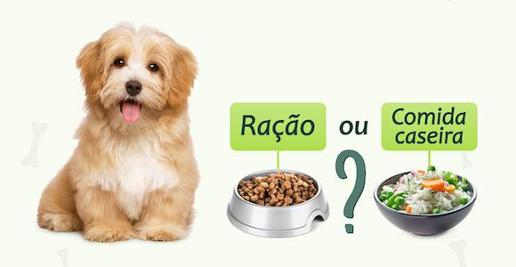 O que é melhor para saúde do cão, ração ou comida?